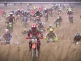 Red Bull Knock Out z
