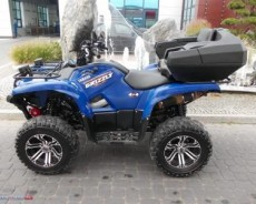 Yamaha Grizzly - rok:2009 - sprzeda� - P�ock - mazowieckie - M3496626