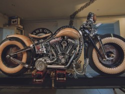 Cheyenne Bike 5 z