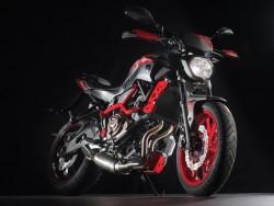 Yamaha MT07 Moto Cage 21 z