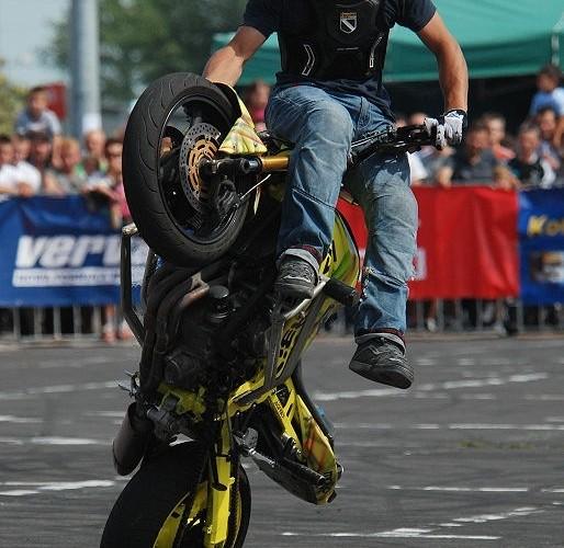 Aras Freestyle Bydgoszcz
