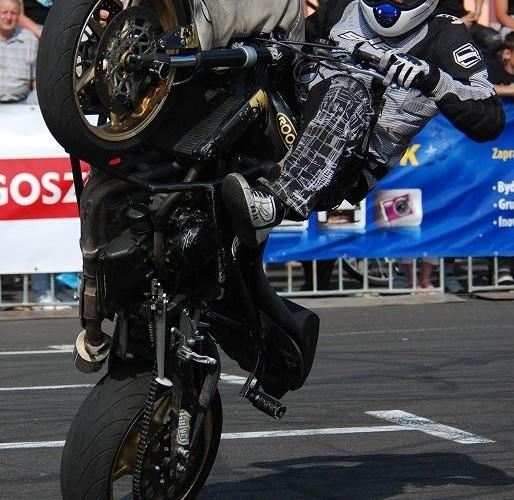 Julien Welsch Razerback cyrkle