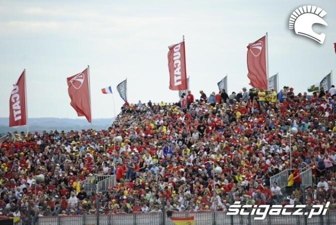 Sektor Ducati MotoGP