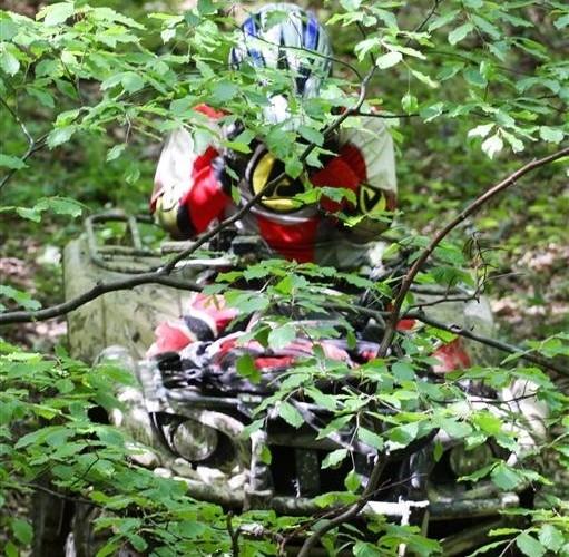 Quady Bieszczady Baligrod 2011 gaszcz