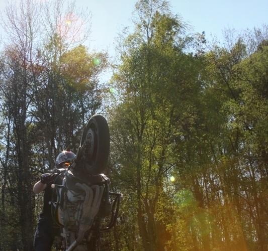 Stunt Zamosc wheelie