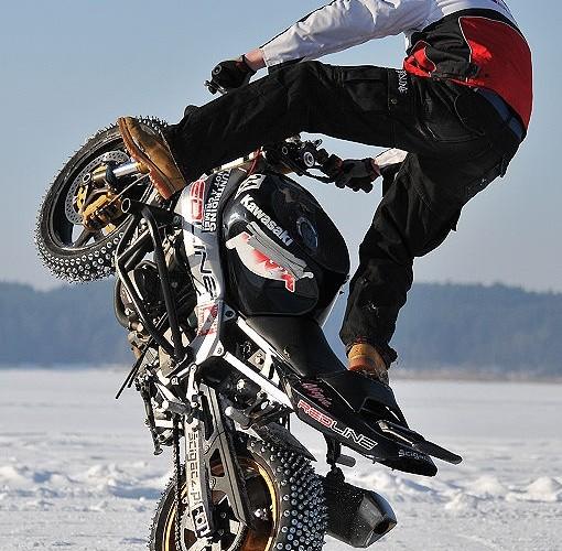 Cyrkle na sniegu Mok
