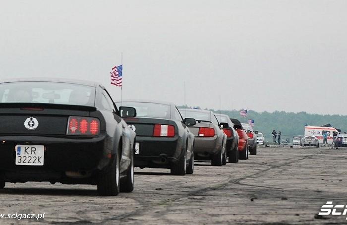 Pokaz Mustangow