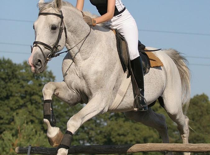 konie i motocykle cz1 04k