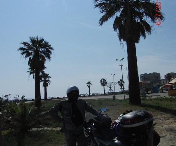 Pod palmami w Albanii